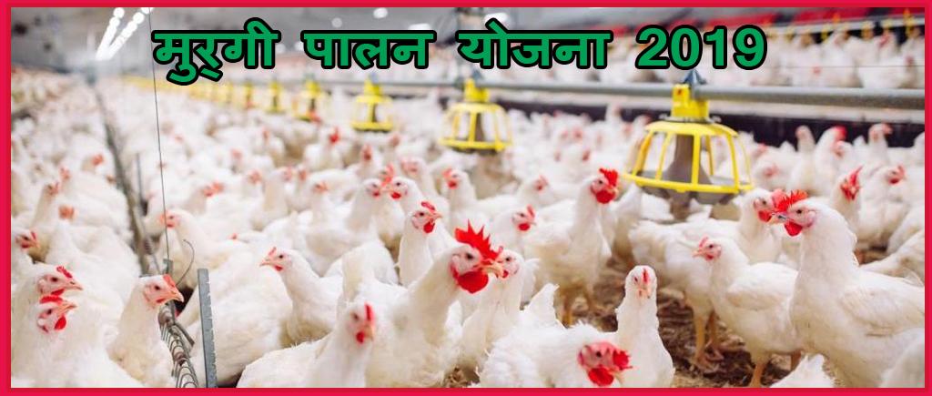 मुर्गी पालन योजना 2019 poltri form yoajan 2019